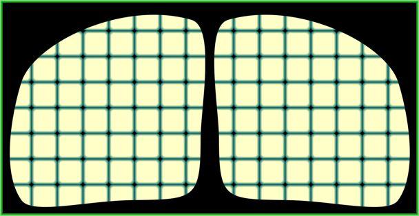 Мир оптических иллюзий Акиоши Китаоки