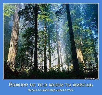 мотиваторы_со_смыслом_motivatoryi_so_smyislom